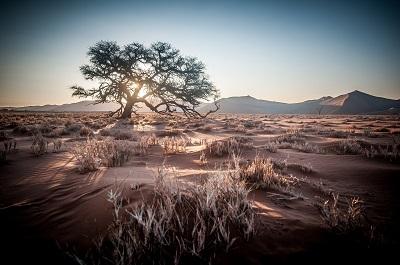 Reise nach Namibia - Urlaub für die Sinne