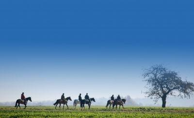 Reiterferien - der perfekte Familienurlaub